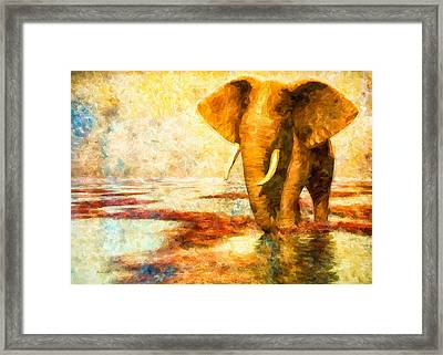 Tusk Framed Print by Bob Orsillo