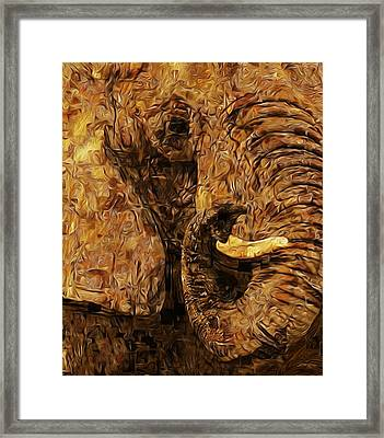 Tusk - Happened At The Zoo Framed Print by Jack Zulli