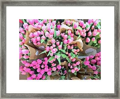 Twenty Two Tulips Framed Print by Cadence Spalding
