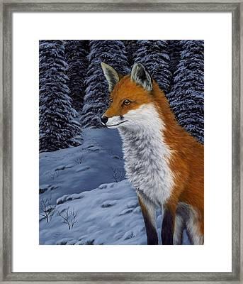 Twilight Hunter Framed Print by Rick Bainbridge