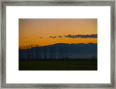 Twilight Mist Framed Print by Eti Reid