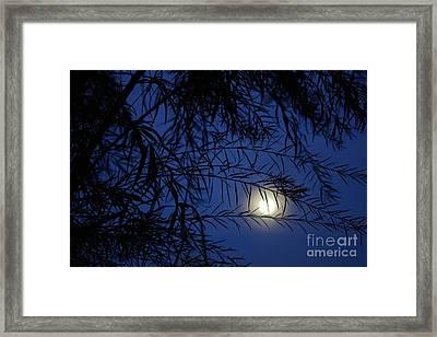 Twilight Moon Framed Print by Kerri Mortenson
