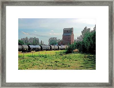 Twilight Pasture Framed Print by Terry Reynoldson
