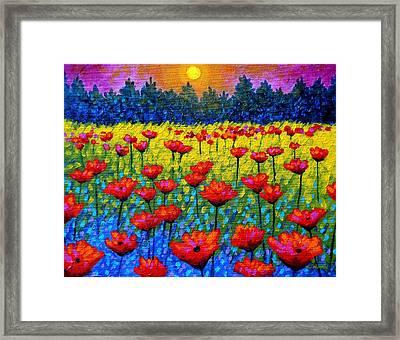 Twilight Poppies Framed Print by John  Nolan