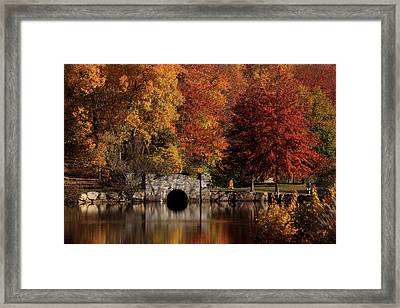 Twin Brooks Framed Print by Karol Livote