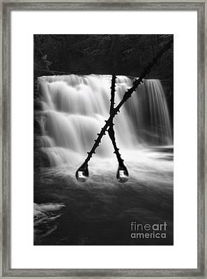 Twin Reflections Framed Print by Dan Friend