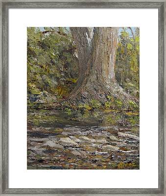 Twin Sentinels On The Cibolo Framed Print by Pauly Tamez