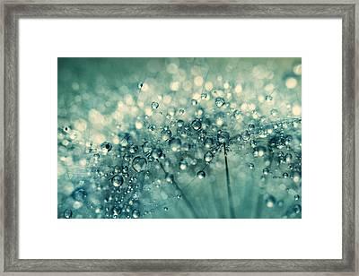 Twinkle In Blue II Framed Print by Sharon Johnstone
