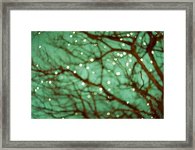 Twinkle Lights In Green Framed Print by Violet Gray