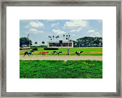 Twinkletoes Framed Print by Benjamin Yeager