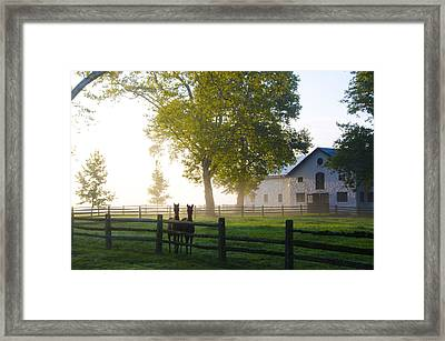 Twins Framed Print by Bill Cannon