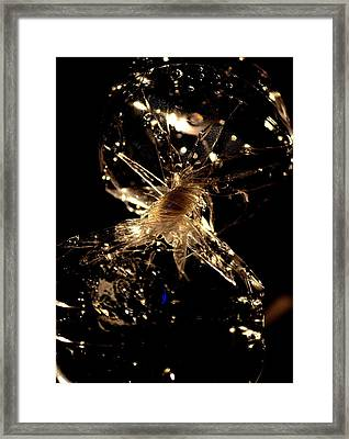 Twist Of Fate Framed Print by Tara Miller