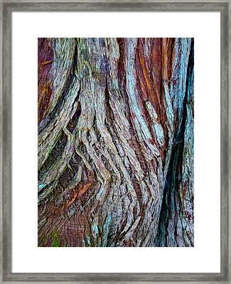 Twisted Colourful Wood Framed Print by Hakon Soreide