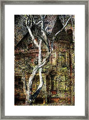 Twisted Tree Overlay Framed Print by Marty Koch