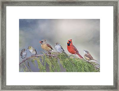 Twitter Town Framed Print by Bonnie Barry