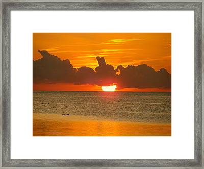 Two Birds And A Sun Framed Print by Morgan Jaynes