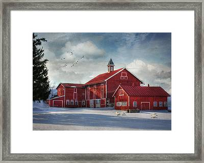 Two By Two Framed Print by Lori Deiter