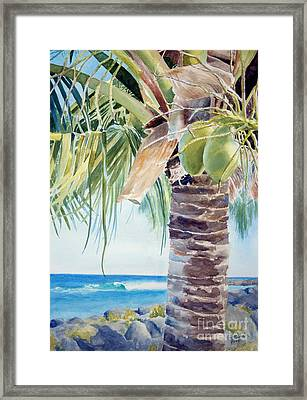 two coconuts -SOLD Framed Print by Lisa Pope