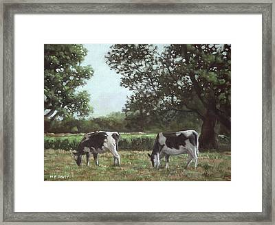Two Cows In Field At Throop Dorset Uk Framed Print by Martin Davey