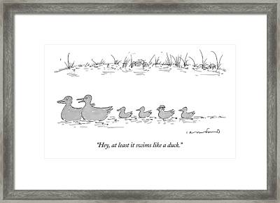 Two Ducks Lead A Line Of Four Ducklings Framed Print by Michael Crawford