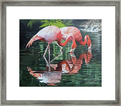 Two Flamingos Framed Print by Jimmie Bartlett