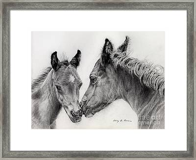 Two Foals Framed Print by Hailey E Herrera