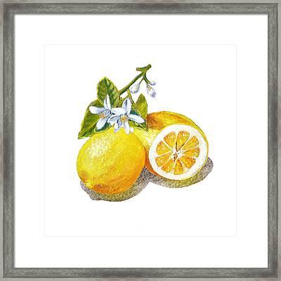 Two Happy Lemons Framed Print by Irina Sztukowski