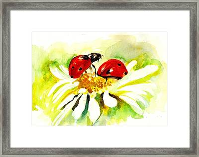 Two Ladybugs In Daisy After My Original Watercolor Framed Print by Tiberiu Soos