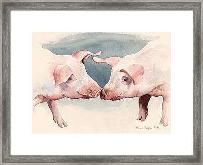 Two Little Piggies Framed Print by Alison Cooper