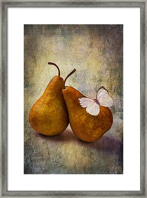 Two Pears And White Butterfly Framed Print by Garry Gay