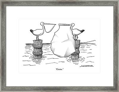 Two Pelicans Converse As The Other's Beak Framed Print by Joe Dator