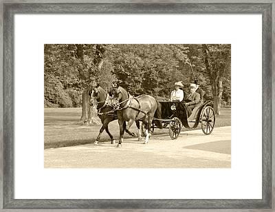 Two Team Four Wheel Cart Framed Print by Wayne Sheeler