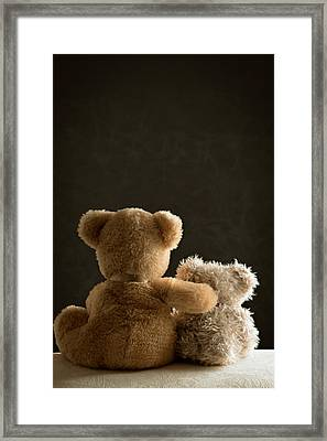 Two Teddy Bears Framed Print by Amanda And Christopher Elwell