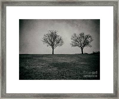Two Trees Framed Print by Mark Miller