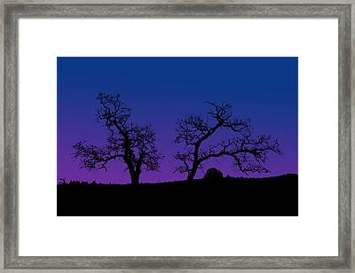 Two Trees Framed Print by Robert Woodward