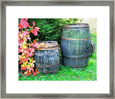 Two Wine Barrels And Red Ivy Digital Print Framed Print by Greg Matchick