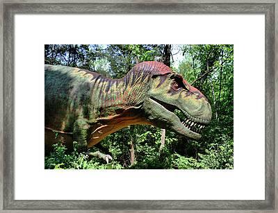 Tyrannosaurus Rex  T. Rex Framed Print by Kristin Elmquist