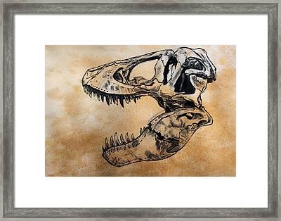 Tyrannosaurus Skull Framed Print by Harm  Plat