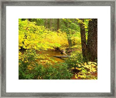 Uc10-9 Framed Print by Shasta Eone
