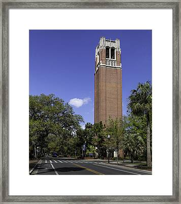 Uf Century Tower And Newell Drive Framed Print by Lynn Palmer