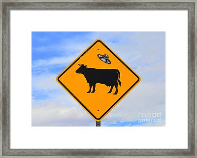 Ufo Cattle Crossing Sign In New Mexico Framed Print by Catherine Sherman