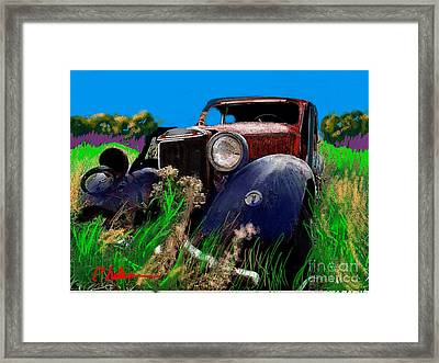 Ugly Face Framed Print by Craig Nelson