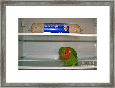 Uh-oh Pickle Framed Print by Terri Waters