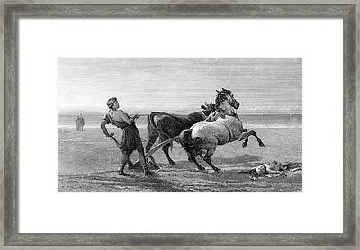 Ulysses Feigning Madness Framed Print by Collection Abecasis
