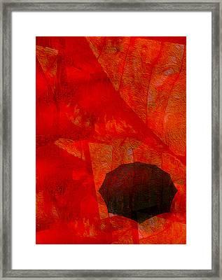 Umbrella Framed Print by Jack Zulli