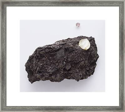 Uncut Diamond In Rock Framed Print by Dorling Kindersley/uig