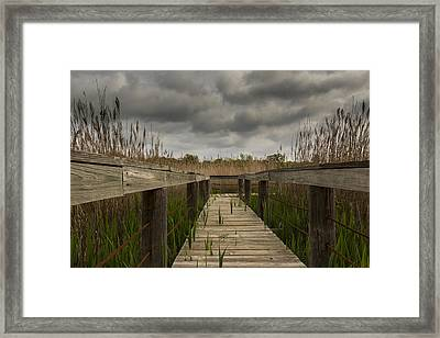 Under The Boardwalk Framed Print by Jonathan Davison