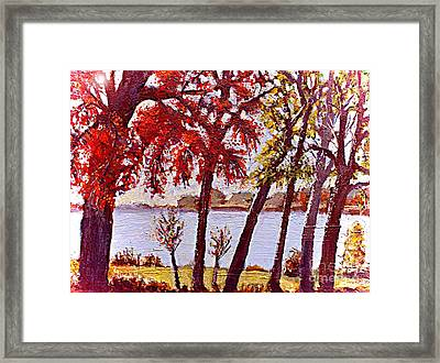 Under The Maple Along The Charles River Framed Print by Rita Brown