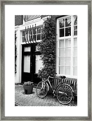 Under The Moss Framed Print by John Rizzuto