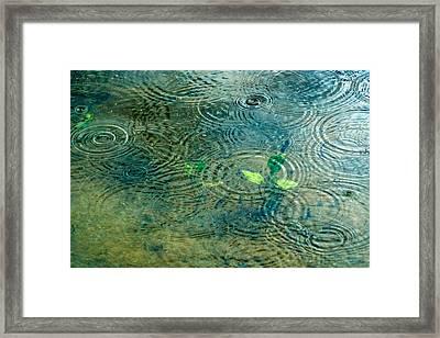 Under The Sea - Featured 3 Framed Print by Alexander Senin